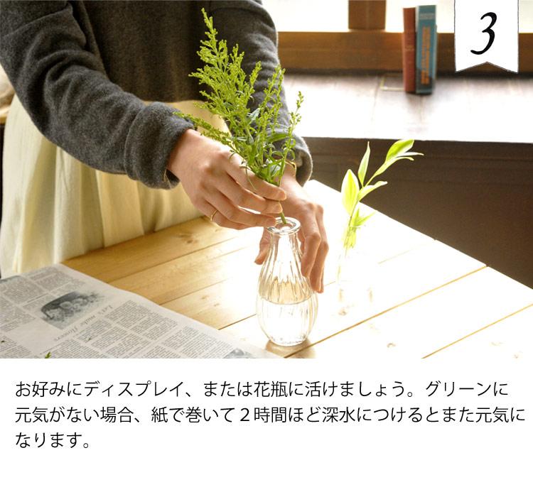 楽しみ方3