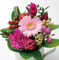 花の種類で選ぶ